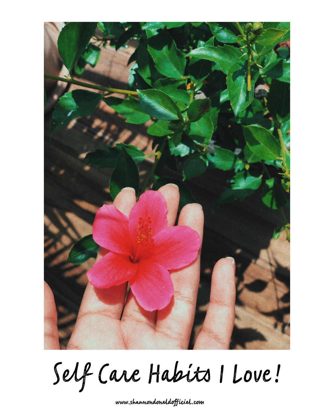 Self Care Habits I Love!